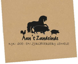 Zandeinde Logo